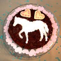anniversaire autour du cheval